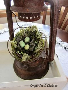 Love this old lantern decorated with the nest!