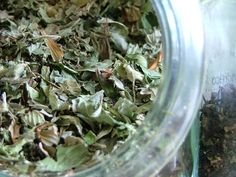 How to Get Rid of Hives With Green Tea