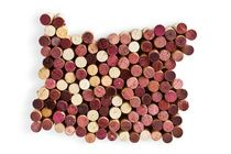 Oregon's 50 Best wines 2012 | Portland Monthly - I think I need to try some of these!