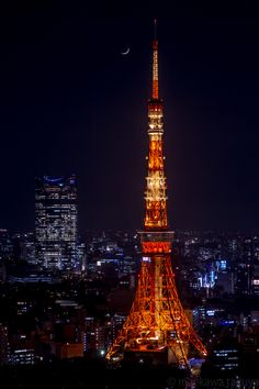 — photography95-72f:   Tokyo Tower