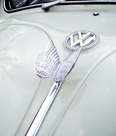Vw Logo Volkswagen Pinterest Volkswagen Beetles And Cars - Car sign with wings