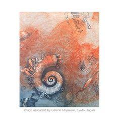 jorg schmeisser - Google Search Work In Australia, Seashell Painting, Gcse Art, Nautilus, Printmaking, Sea Shells, Fossil, Politics, Paintings