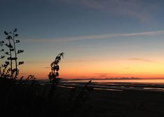 Beautiful sunrise from Bettystown beach. Cottages Ireland, Luxury Holiday Cottages, Beautiful Sunrise, Rose Cottage, In This Moment, Sunset, Building, Beach, Garden