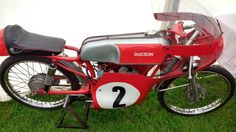 Sheene Special Ducson 50 ridden by Bill ivy Ivy, Events, Running, Keep Running, Why I Run, Hedera Helix