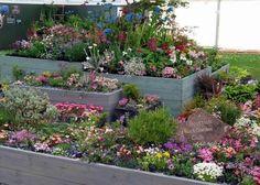 images about rock garden ideas on Pinterest
