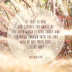 Bible verse design