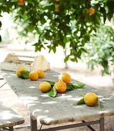 Love citrus trees The beer-garden table pictured here came from an antiques shop [Ojai California Ranch House - Greg and Kelley Motschenbacher - Country Living] Beer Garden, Garden Table, Terrace Garden, Dream Garden, Home And Garden, California Ranch, Citrus Trees, Orange Trees, Citrus Fruits