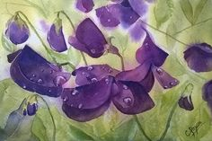 Midnight Lathyrus by CPascoeWatercolours on Etsy