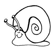 """Résultat de recherche d'images pour """"coloriage escargot"""""""