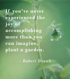 """If you've never experienced the joy of accomplishing more than you can imagine, plant a garden."" ~ Robert Brault"