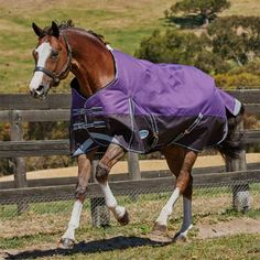 WeatherBeeta ComFiTec Plus Dynamic Medium-Lite Turnout Blanket – Performance Horse Blankets