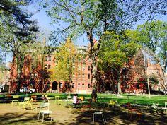 Harvard University Harvard University, Places Ive Been, Dolores Park, Travel, Voyage, Viajes, Traveling, Trips, Tourism