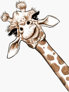 'Sketch Giraffe Art' Sticker by JonThomson - Portrait - Tiere - Art Sketches Giraffe Painting, Giraffe Art, Cute Giraffe Drawing, How To Draw Giraffe, Cartoon Giraffe, Elephant Art, Art Drawings Sketches, Cute Drawings, Sketches Of Animals