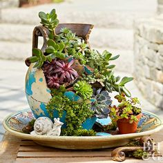Fairy Gardens Are So Yesterday Whether Scattered With Seashells Or Miniature Figurines, Mermaid Gardens Are Making A Splash. Look at Some Of Our Favorites Before You Plan A Mermaid Garden For Yourself. Fairy Garden Pots, Fairy Garden Houses, Fairy Gardens, Fairies Garden, Dish Garden, Dream Garden, Succulents In Containers, Succulents Garden, Succulent Plants
