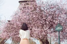 Postcards from Paris - Gary Pepper