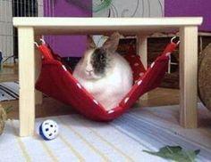 Hängemattengestell mit 1 Hängematte f. Kaninchen von Lazzyy's Kuschelshop auf DaWanda.com