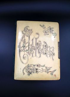 Antique Victorian Celluloid Photo Album with Pictures