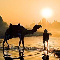 Luce dorata - Fotografia di Yaman Ibrahim