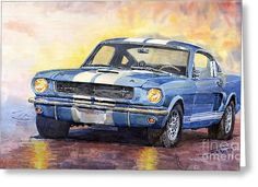 Ford Mustang Gt 350 1966 Greeting Card by Yuriy Shevchuk