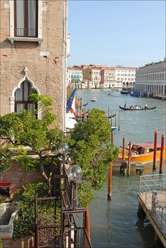 Le grand canal (Venise) | Flickr - Fotosharing!