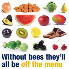 Us #Bees are super important! Not just for #Business but look what there wouldn't be without us? #Food #Nature #Health