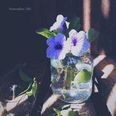 Veronica, Glass Vase, Instagram Posts, Flowers, Painting, Home Decor, Art, Art Background, Decoration Home