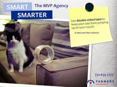 SMART: Using double-sided tape to close gaps in your button-up shirt. SMARTER: Using double-sided tape to keep your furniture looking new. 732-634-7777 http://mvpinsuranceagency.blogspot.com/2015/02/dangerous-foods-for-your-dogs-and-cats.html #cats #pets #sofa #couch #insurance agent #furniture The MVP Agency - Farmers Insurance - Google+