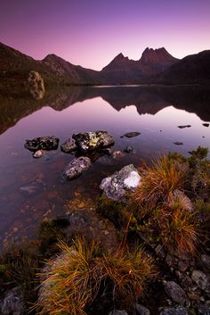 Hoping to be next interstate trip - Cradle Mountain National Park, Tasmania, Australia Tasmania, Great Places, Places To See, Beautiful World, Beautiful Places, Australia Landscape, Parque Natural, Australia Travel, Dream Vacations