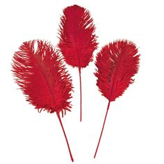 Red Ostrich Feathers - OrientalTrading.com