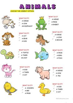 animals worksheet - Free ESL printable worksheets made by teachers # learning english for kids free printable English Activities For Kids, Learning English For Kids, English Worksheets For Kids, English Lessons For Kids, Kids English, Preschool Learning Activities, Preschool Printables, Kindergarten Worksheets, Teaching English
