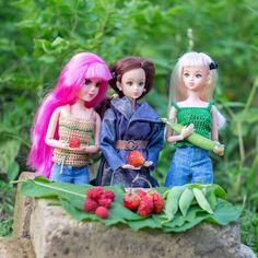 Урожай  #dollstagram #onesixthdoll #aikaofabbie #dfordiana #hforhilda