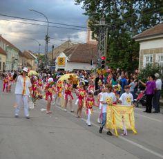 Karneval cveća, 2011. godina.