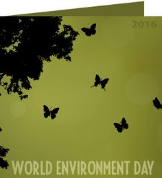 Antoinette, thank you for taking action on world environment day. 'We have to walk in a way that we only print peace and serenity on the Earth. Walk as if you are kissing the Earth with your feet.' ~ Thích Nhất Hạnh