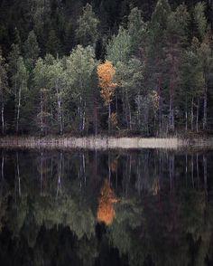 Varaslähtö syksyyn Let the autumn begin Finland, Landscapes, Let It Be, Autumn, River, Photography, Outdoor, Paisajes, Outdoors