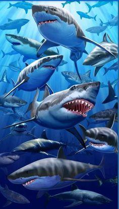 Great White Sharks Beach Towel Extra Large Ocean Pool Souvenir for sale online Shark Pictures, Shark Photos, Large Beach Towels, Oversized Beach Towels, Underwater Animals, Shark Art, Shark Tattoos, Beach Bath, Beach Pool