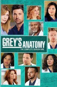 Anatomía de GreyTemporada 9 (Grey's Anatomy,2012-2013) Acabada de ver en Octubre 2013