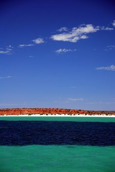 Shark Bay. Colour combinations don't come better than this.