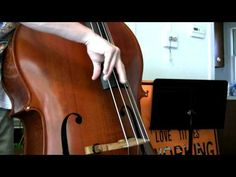 Red Hot Chili Peppers - Can't Stop Upright Bass Cover
