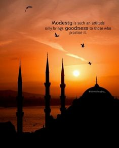 Modesty in Islam means to have a good conscience, to be shy to commit evil deeds and to feel remorse for sinning.
