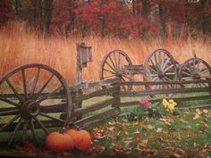 Bureau County, Illinois Terry Donnelly/Donnelly-Austin Photography The best way to predict the future is to invent it. Cannon, Welcome, October, Photography, Wallpapers, Life, Canon, Wallpaper, Photograph