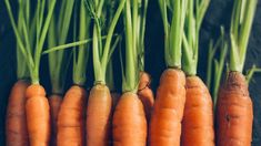 Carrots aren't the only food that can help improve your eyesight.