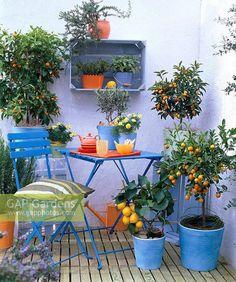 Creative 128 Garden On Small Balcony - garden landscaping Tiny Balcony, Porch And Balcony, Balcony Plants, Balcony Ideas, Ideas Terraza, Balkon Design, Terrace Garden, Small Patio, Outdoor Rooms