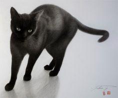 黒猫 Tシャツ|Tspacerhythmスペースリズムのブログ