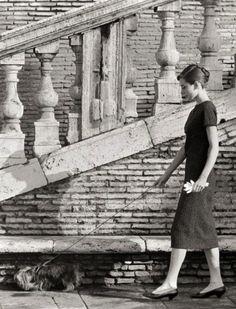 Audrey Hepburn with her Yorkie, Mr. Famous, around Trinità dei Monti, 1958.