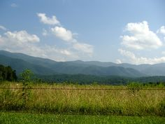 Cade's Cove is an 11-mile one way loop through the Smoky Mountains. There are beautiful views along the way, and it is a great break from hiking. At the far end of the loop there is a visitor's cen...