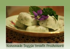 Homemade Frozen Dog Breath Fresheners (with yogurt, parsley, and mint)