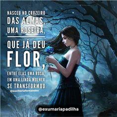 Resultado De Imagem Para Maria Mulambo Do Cruzeiro Das Almas Fé