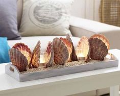 Deko-Ideen DIY decorations with shells - inspiration and fantasy Seashell Art, Seashell Crafts, Beach Crafts, Diy And Crafts, Seashell Decorations, Seashell Projects, Diy Projects, Beach House Decor, Diy Home Decor