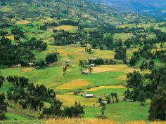 Granja Porcon (al norte de Cajamarca)