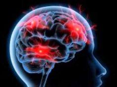 Biologia  - choroby układu nerwowego - YouTube Youtube, Youtubers, Youtube Movies